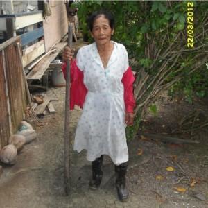 Mevrouw Marie Ronowikromo, die als een van de laatsten de ketan ieran verbouwt, met haar stok om de rijst uit de omhulsels te krijgen