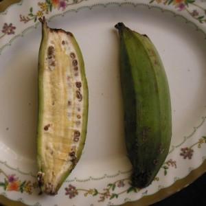 Longitudinale sectie van ghedan kloeto vrucht